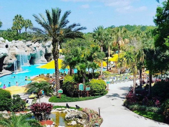 Hyatt Regency Grand Cypress Cheap Vacations Packages   Red Tag Vacations