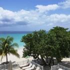 Coco La Palm Beach