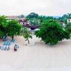 Coco La Palm Aerial