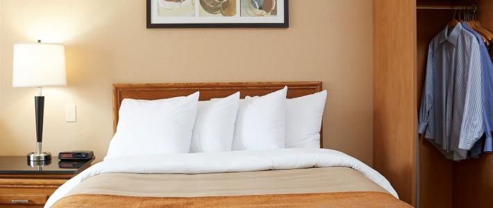 comfort inn moncton east vacation deals lowest prices. Black Bedroom Furniture Sets. Home Design Ideas
