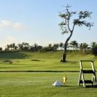 Iberostar Dominicana - Golf