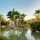 11739_Melia Punta Cana Beach Resort_18