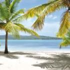 Playa Bachata Resort Beachfront