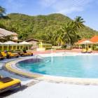 Starfish_Saint_Lucia_