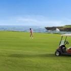 Tortuga Bay Puntacana Resort and Club - Golf