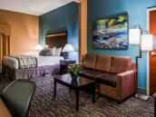 Best Western Plus Mcdonough Inn & Suites