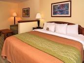 Comfort Inn & Suites Staunton