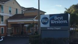 Best Western Wesley Chapel