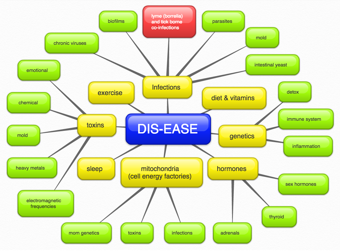 Dis-ease in a Lyme disease treatment image from Marty Ross MD