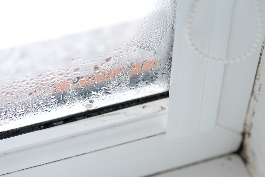Procract has services to prevent heat loss through your windows