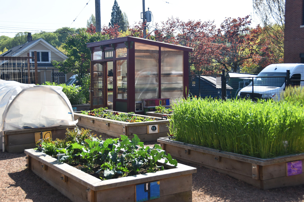 GPS garden raised beds and greenhouse.