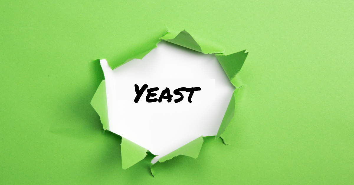 Is it Yeast in chronic Lyme treatment Image by Marty Ross MD