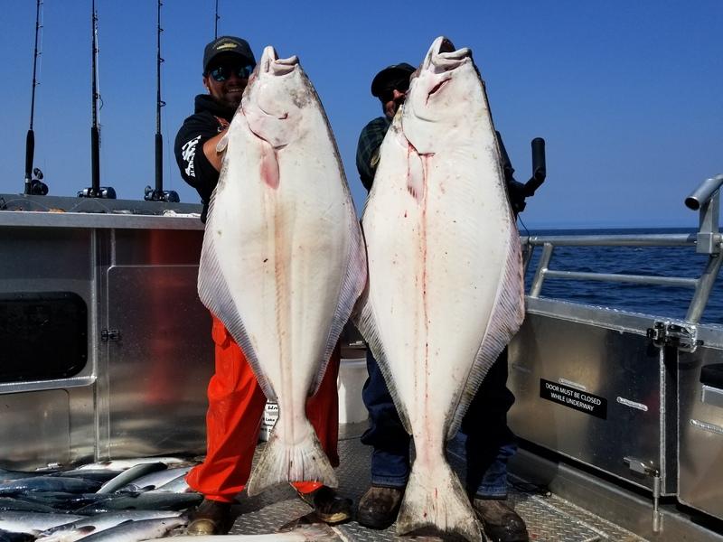 Halibut Fishing Homer Alaska