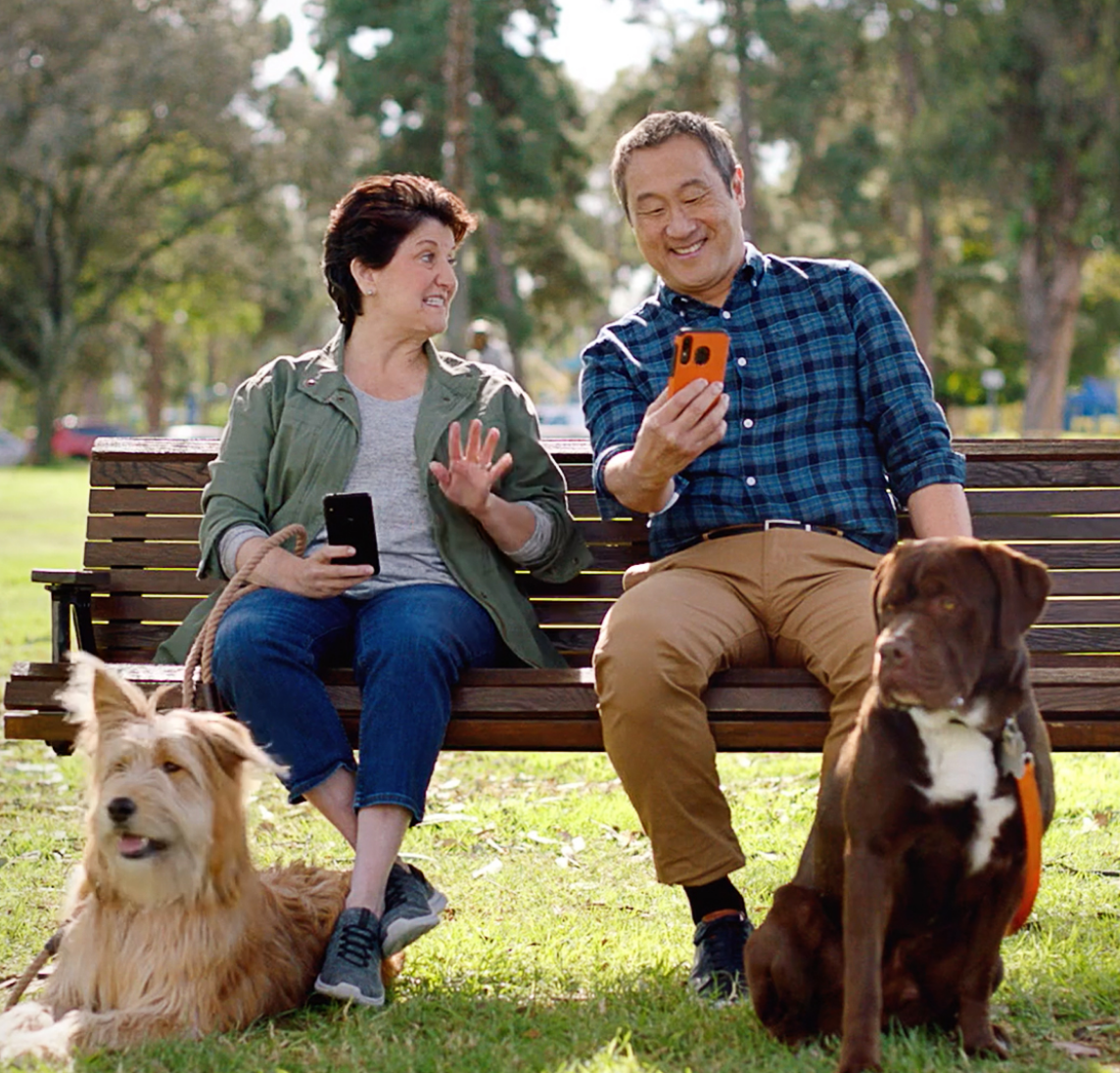Two people sitting on a park bench talking with their two dogs nearby