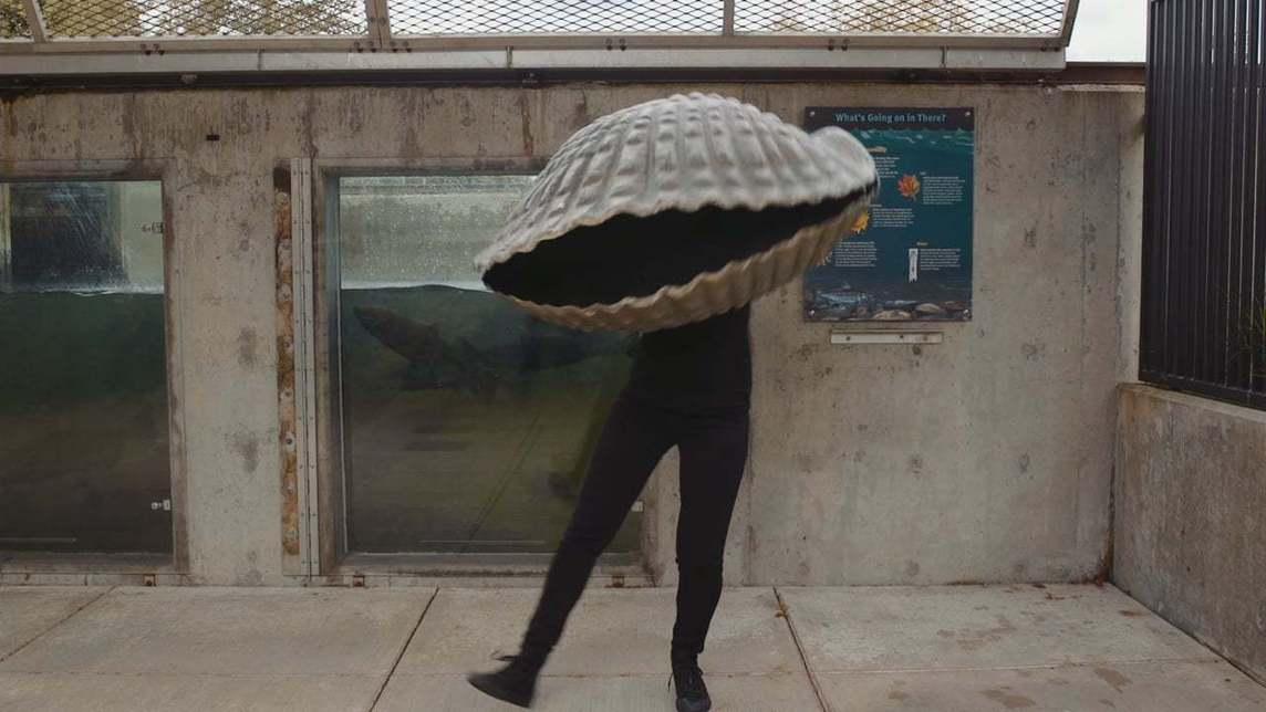 Person in clam costume