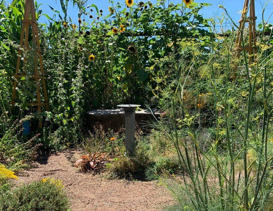 sundial and bench in garden