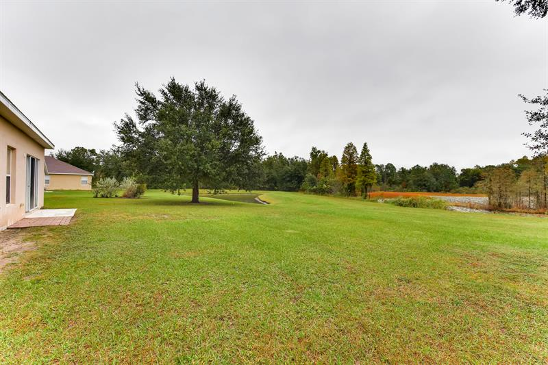 Photo of 6222 Dainty Bess Court, Land O Lakes, FL 34639
