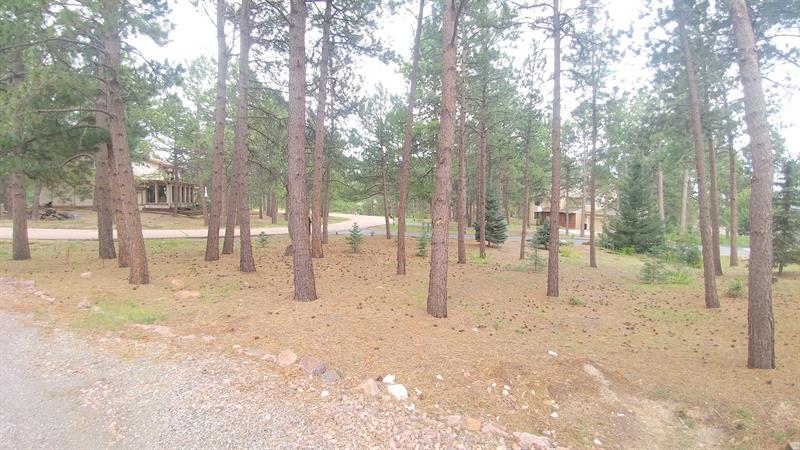 Photo of 665 Hidden Marsh Road, Monument, CO 80132
