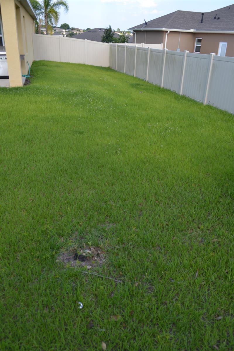 Photo of 12552 Hammock Pointe Circle, Clermont, FL 34711