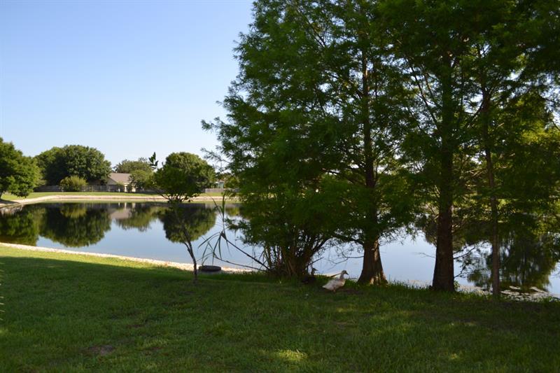 Photo of 4067 Boca Woods Drive, Orlando, FL, 32826