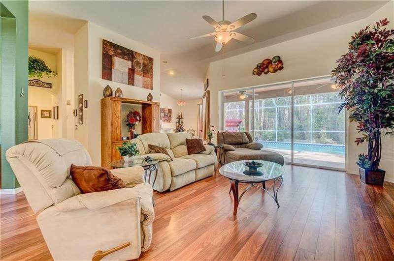 Photo of 1135 Wyndham Lakes Drive, Odessa, FL, 33556