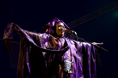 Khaira Arby, a well-known singer-song writer for indigenous communities of the Sahara Desert, performs at the Festival au Desert. Music is a particularly popular form of universal artistic expression.