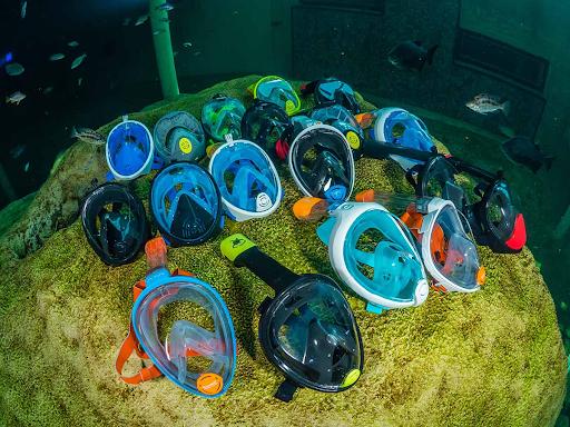 Beste snorkel masker volledig gezicht | Test, Voordelen, Nadelen en Tips