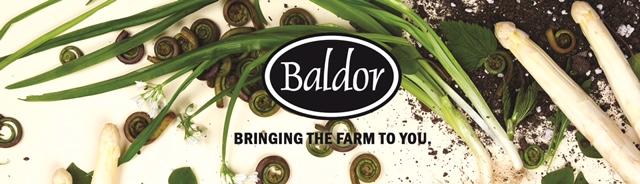 BaldorHeader (1)