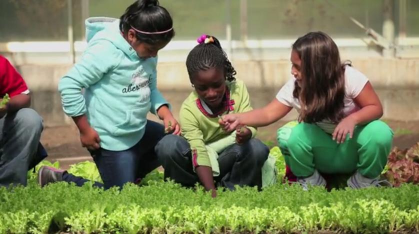 growing farmers initiative
