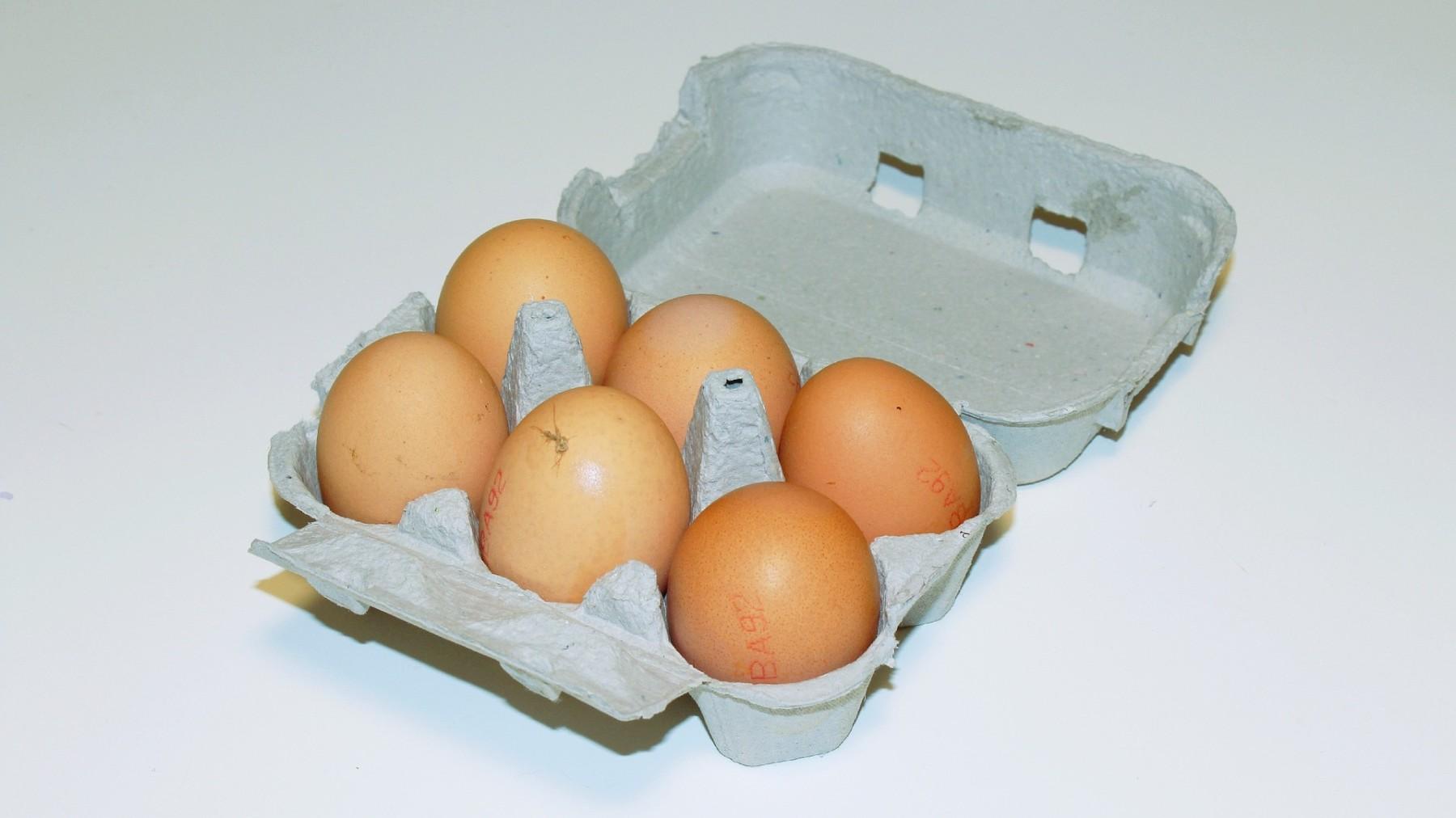 eggs-2147172_1920