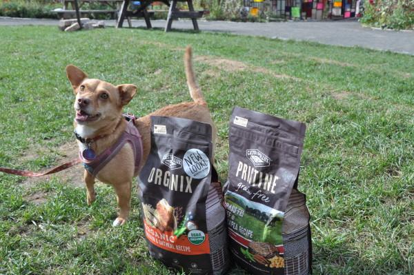 Jam poses by bags of Castor & Pollux dog food (Jordan Werner Barry)