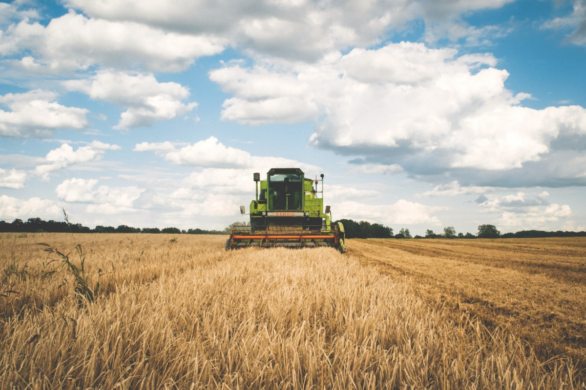 agriculture_cereal_clouds_countryside_cropland_farm_farmland_field-933775