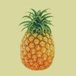 Pineapple Screen Images