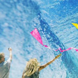 Water Kites Screen Images