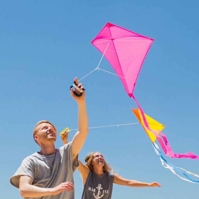 Kites Screen Images
