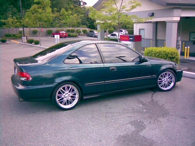Civic_Fresh_Tint