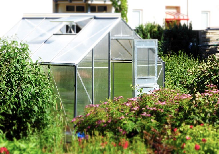 5 Top Green House Building Ideas