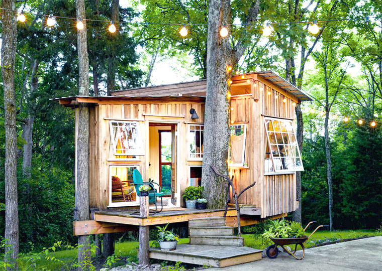 tree guesthouse