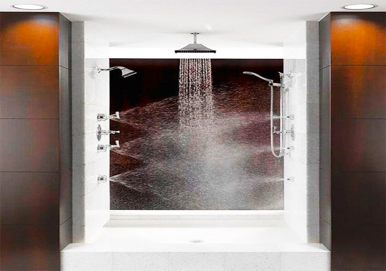 multi-directional shower