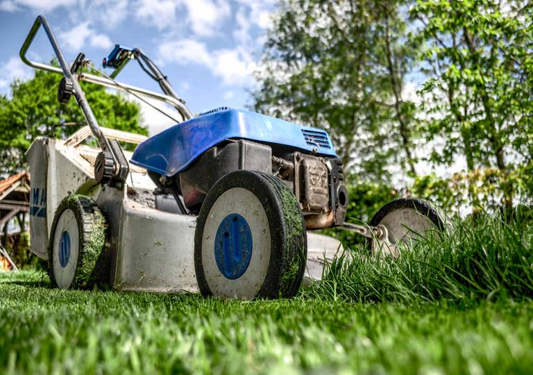 5 Reasons Why You Should Hire a Professional Garden Services Company