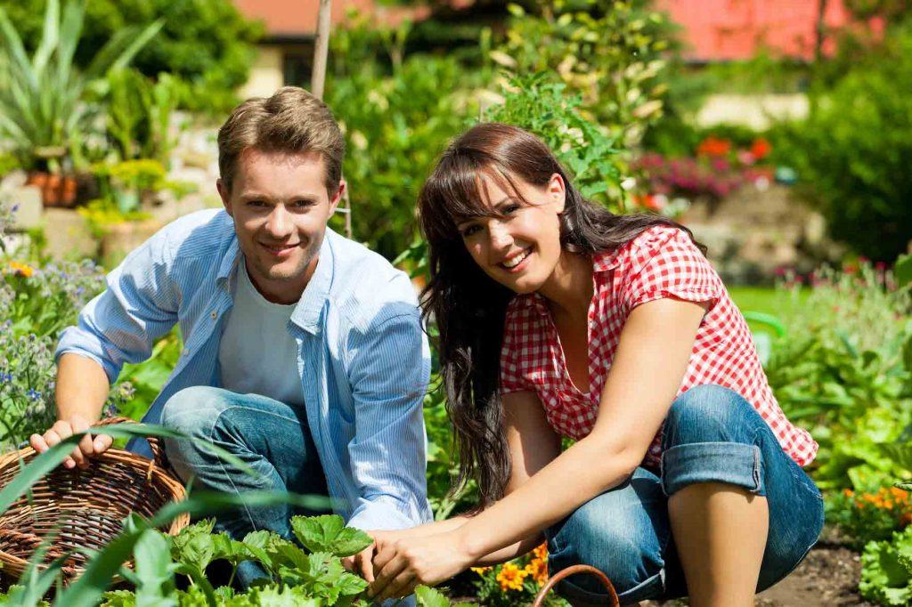 Jobs to do around your house if you get isolated: Plan your garden