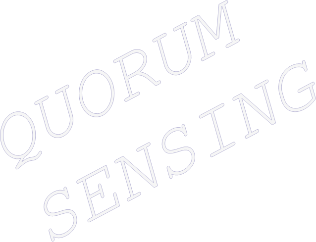 PPT – quorum sensing PowerPoint presentation | free to download - id