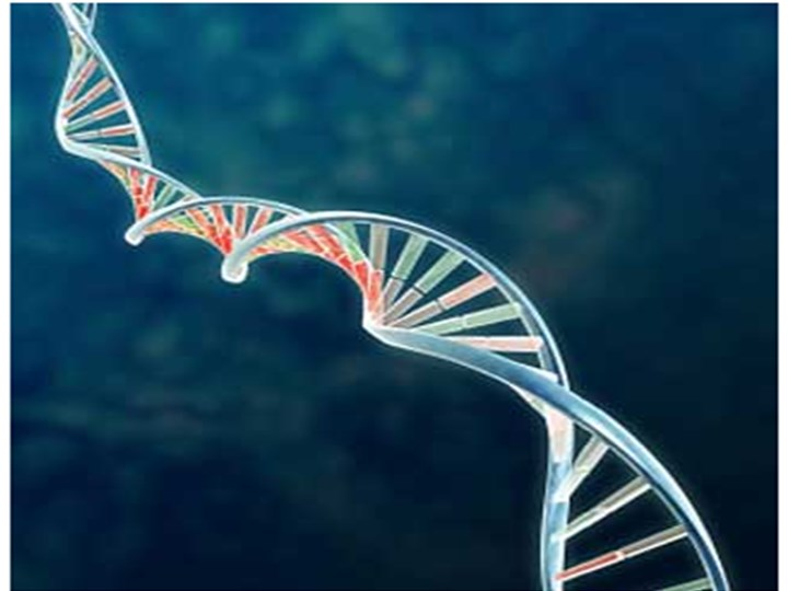 Ppt Gene Therapy Powerpoint Presentation Free To