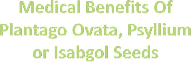 Ppt Medical Benefits Of Plantago Ovata Psyllium Or Isabgol Seeds