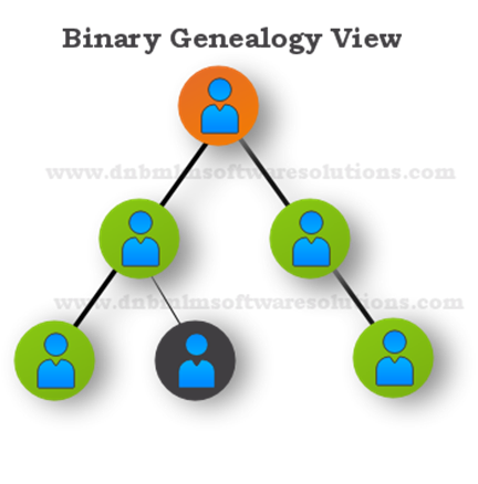 PPT – Binary MLM software for network marketing business PowerPoint