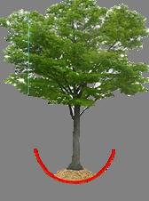 PPT – Desert Cultivation, Desert Farming Technology