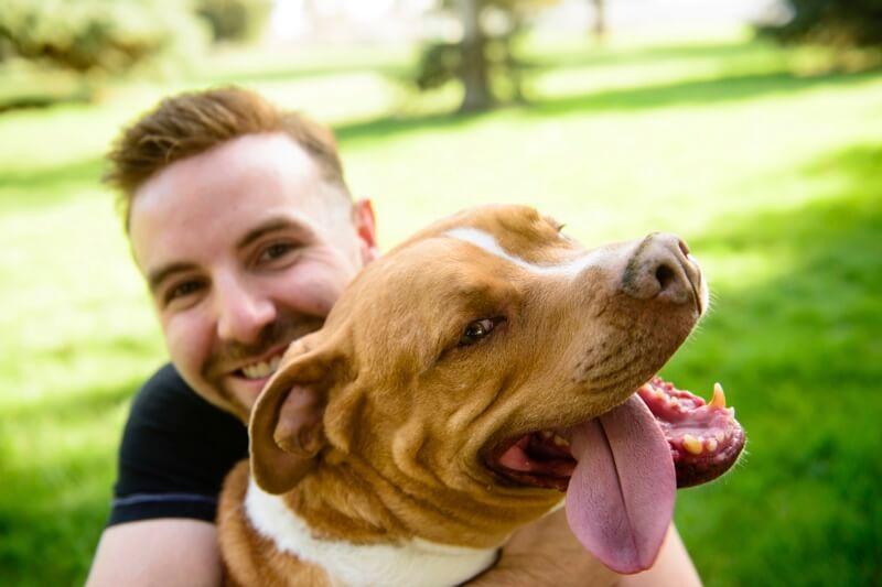 bring dogs to work to enhance work life balance
