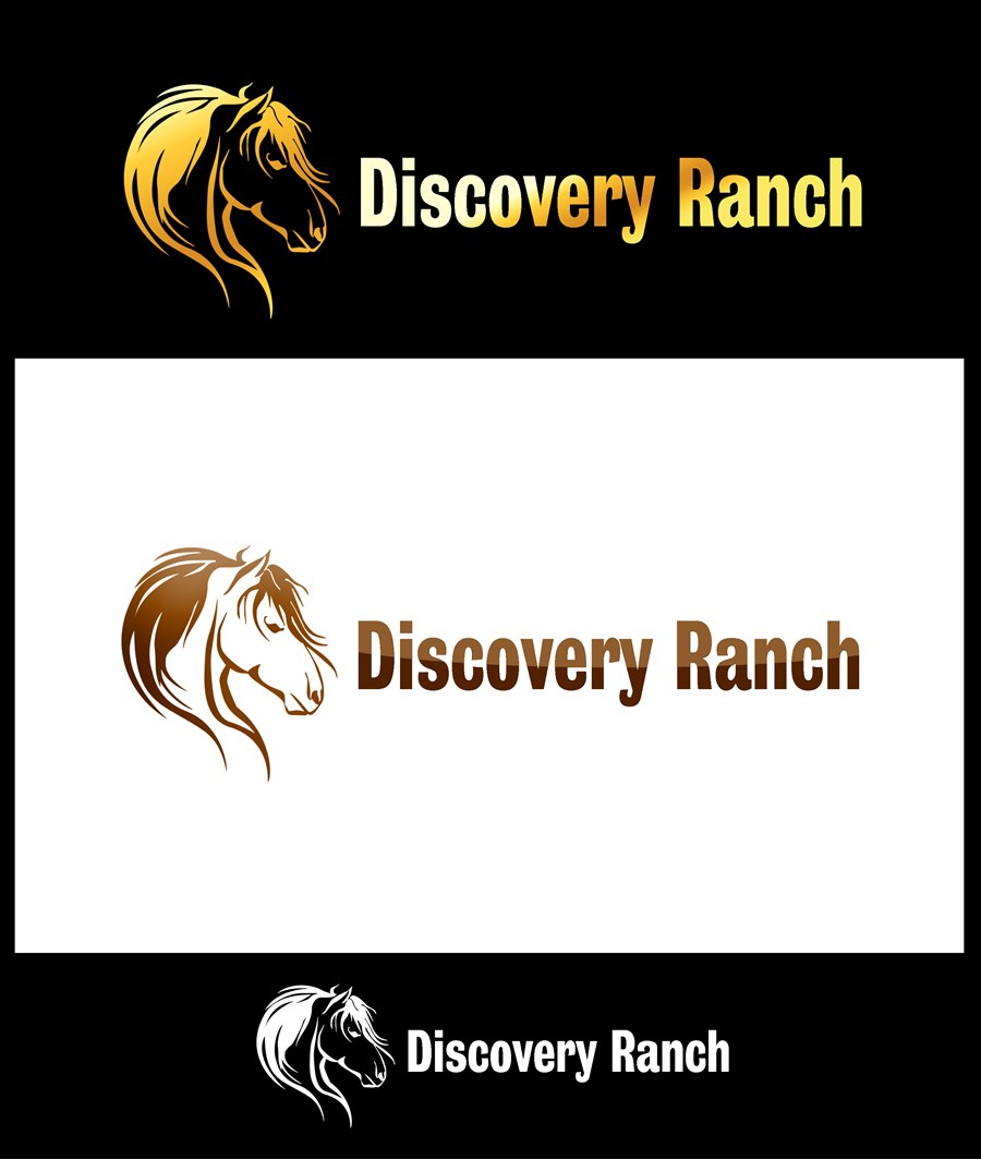 Logo Design by Respati Himawan - Entry No. 16 in the Logo Design Contest Creative Logo Design for Discovery Ranch.