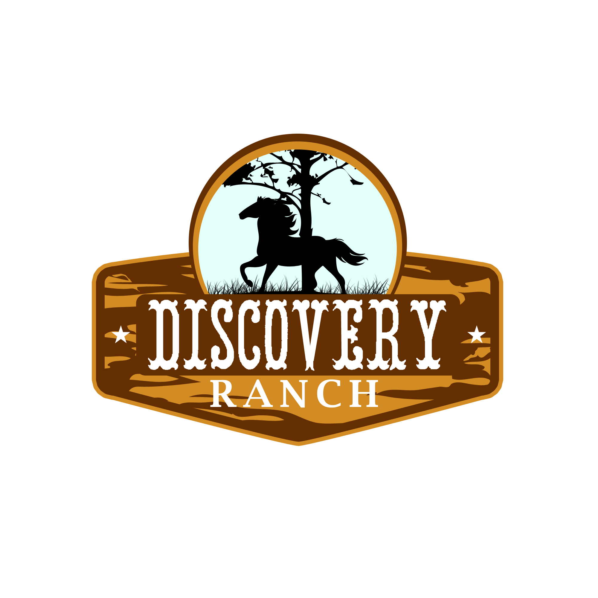 Logo Design by Kenneth Joel - Entry No. 20 in the Logo Design Contest Creative Logo Design for Discovery Ranch.