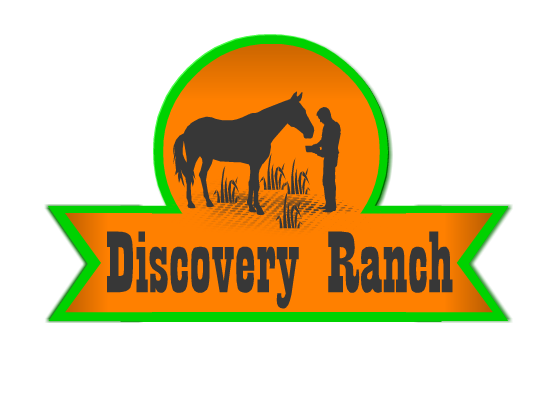 Logo Design by Ismail Adhi Wibowo - Entry No. 29 in the Logo Design Contest Creative Logo Design for Discovery Ranch.